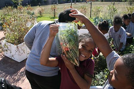 learning-garden-pilot-program